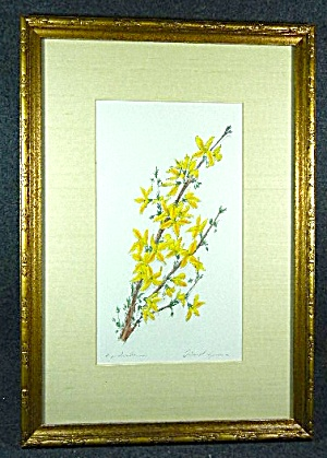 Framed And Matted Artist Signed Print Of Flowers