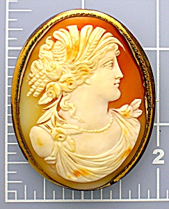 Cameo Carved Shell Italian 2 3/8 Inch Gilt Brass (Image1)