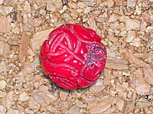 Coral Hand Carved Red beads 55 in All (Image1)