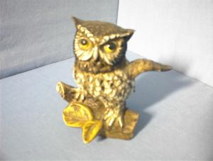 Wise Owl Sitting on a Branch. (Image1)