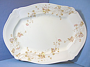 Royal Semi Porcelain Transfer Ware Johnson Bros Platte