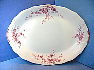 Transfer Ware Platter England Jhw & Sons