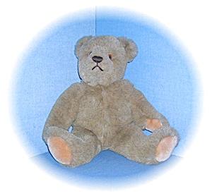 BIALOSKY Teddy Bear by Gund (Image1)