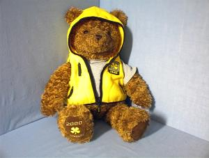 GUND Wish Bear LUCK - 2000 (Image1)
