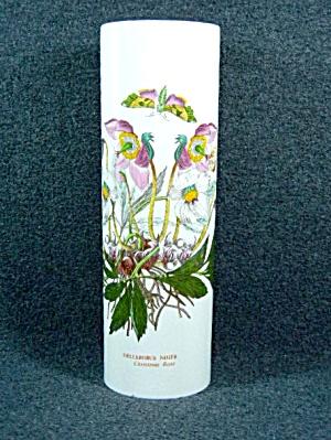 Portmeirion BOTANIC GARDEN Christmas Rose Pasta Jar (Image1)