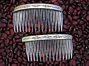 Sterling Silver and Plastic Teeth Hair Comb (Image1)