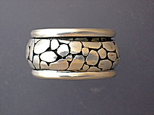 Sterling Silver River Rock Spinning Inner Ring