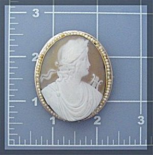 14K Gold Shell Cameo  Seed Pearls Brooch  (Image1)
