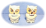 Click here to enlarge image and see more about item 032020037: Shawnee Owls Salt & Pepper Shakers