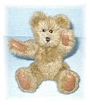 Click here to enlarge image and see more about item 0406200533:  8 INCH BOYDS TEDDY BEAR