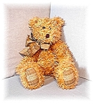 Click here to enlarge image and see more about item 0519200405: 19 IncBOYD Light Tan Pellet Fill Curly  Bear
