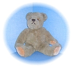 Click here to enlarge image and see more about item 0721200503: BIALOSKY Teddy Bear by Gund