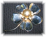 Click to view larger image of 4 Inch Sterling Silver Foux Pearl Brooch (Image1)