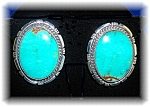 Earrings Sterling Silver Turquoise Tommy Ross Clips