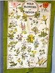 Click here to enlarge image and see more about item 0918200234: 100% Linen Flowers Of Devon English Tea Towel