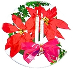 CHRISTMAS TIN - POINSETTEAS