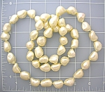 Pearl White Troca bead necklace 34 Inches Long