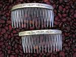 Sterling Silver and Plastic Teeth Hair Comb