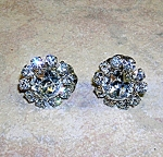 Austrian Crystal Rodium Silver Flower Clip Earrings