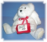 Click here to enlarge image and see more about item 1206200522: 14 Inch White Boyds Angel Bear