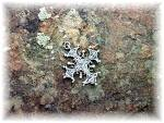 Pendant PARENTI Sterling Silver Ornate Cross