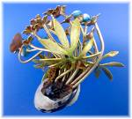 Click to view larger image of Brass Painted Flowers Shell Vines  and Butterfly (Image3)