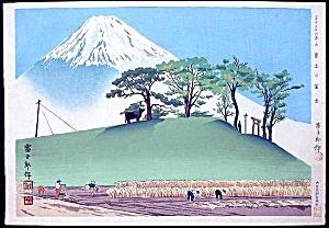 TOKURIKI Tomikichiro (1902-1999) (Image1)