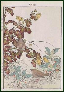 Imao KEINEN (1845-1924) (Image1)