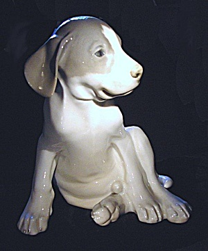Royal Copenhagen: Large Pointer puppy figurine (#1452/259) (Image1)