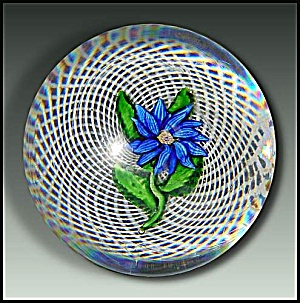 St. Louis Blue Dahlia On Latticino Paperweight (Antique)