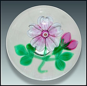 Selkirk Glass1999: Pink wild rose paperweight (Hedgerow Ser. (Image1)