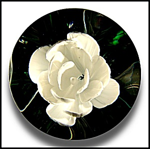 Joe Zimmerman 1978: White crimped rose paperweight (Image1)