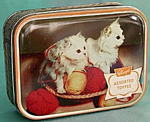 Vintage Sharps Toffee Tin - White Persian Kittens