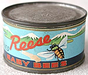 Vintage Sealed Tin of  Fried Baby Bees (Image1)
