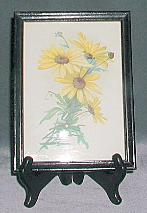 Framed Image Of Black Eyed Susan's