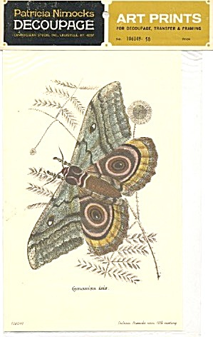 Vintage Decoupage Art Prints Of Moths