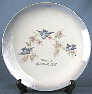 Vintage Bluebird Plate Souvenir From Illinois