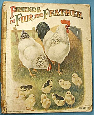 Vintage Children's Book: Friends In Fur & Feathers