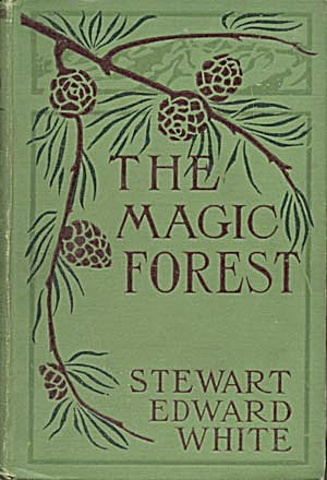 The Magic Forest (Image1)