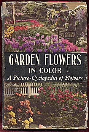 Garden Flowers in Color (Image1)