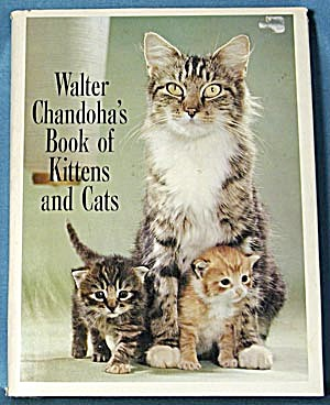 Walter Chandoha's Book Of Kittens And Cats