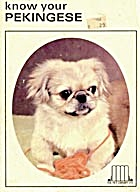Know Your Pekingese