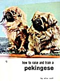 How to Raise and Train A Pekingese  (Image1)