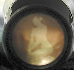 Vintage Plastic Shot Glass with Nude (Image1)
