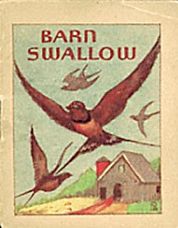 Cracker Jack Toy Prize:Bird Books:Starling/Barn Swallow (Image1)