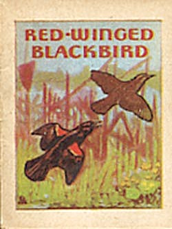 Cracker Jack Toy Prize:Bird Books Bobolink & Red Winged (Image1)