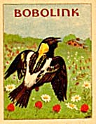 Cracker Jack Toy Prize:bird Book: Bobolink