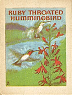 Cracker Jack Toy Prize:Bird Books Bob White/Ruby Throat (Image1)