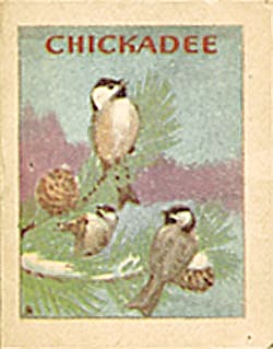 Cracker Jack Toy Prize:Bird Books:Blue Jay & Chickadee (Image1)