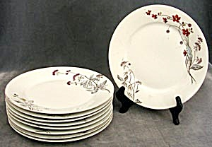 Antique Set Of Floral Dinnerware 9 Plates & Platter